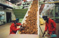 транспортни ленти за тютюн